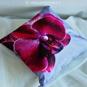 Orchidea´s Dream in Grey